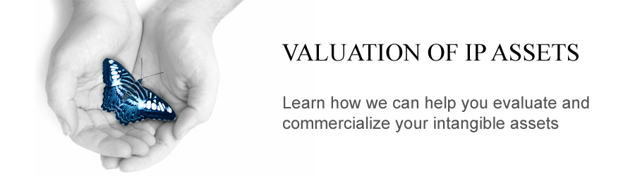Valuation of IP Assets